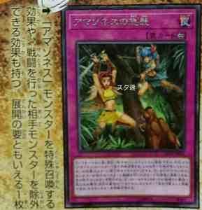 Amazoness no Kyuushuu Adf996cf