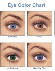Hazel eye color chart also seatle davidjoel rh