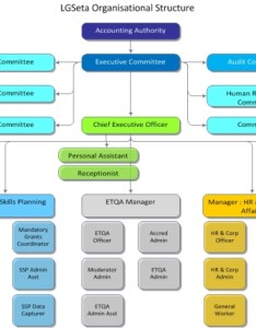 Organogram organizational chart org example sample source lgseta http ygraph also rh