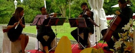 cuarteto-appassionato--ensemble-lakhesis--90492