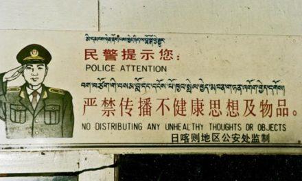 张杰:为什么中国没有崛起只是野蛮生长?