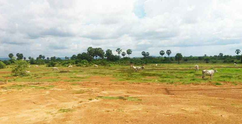 S-LD080221 Land For Sale
