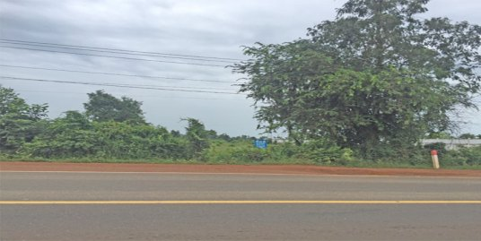 Nation Road 4| Land For Sale 73 Km From Phnom Penh