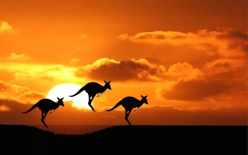 Avustralya'da Yaşam