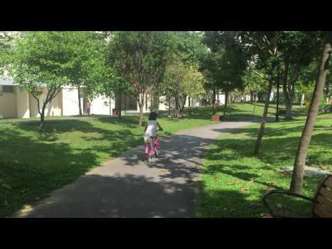 Milestone – Cycling On 2 Wheels