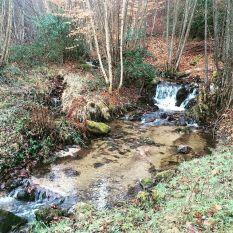 Que ce ruisseau est charmant !