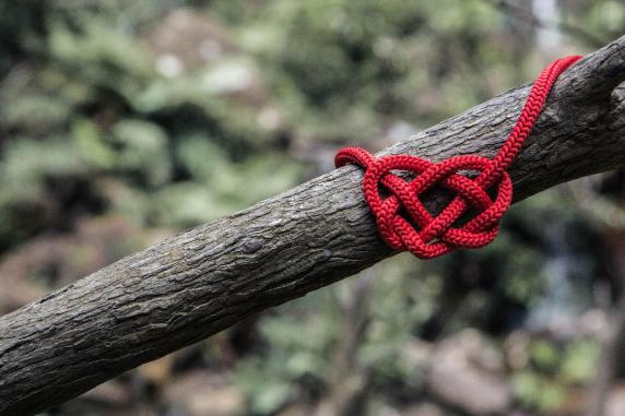 Spread happiness depicted by red thread knot on a branch of tree