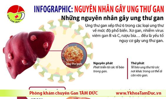 infographic viem gan b viem gan c ung thu gan phong kham chuyen gan tam duc tphcm