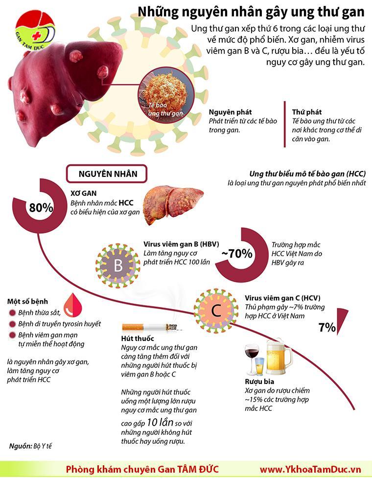 infographic viêm gan B viêm gan C ung thư gan phòng khám gan tâm đức tphcm
