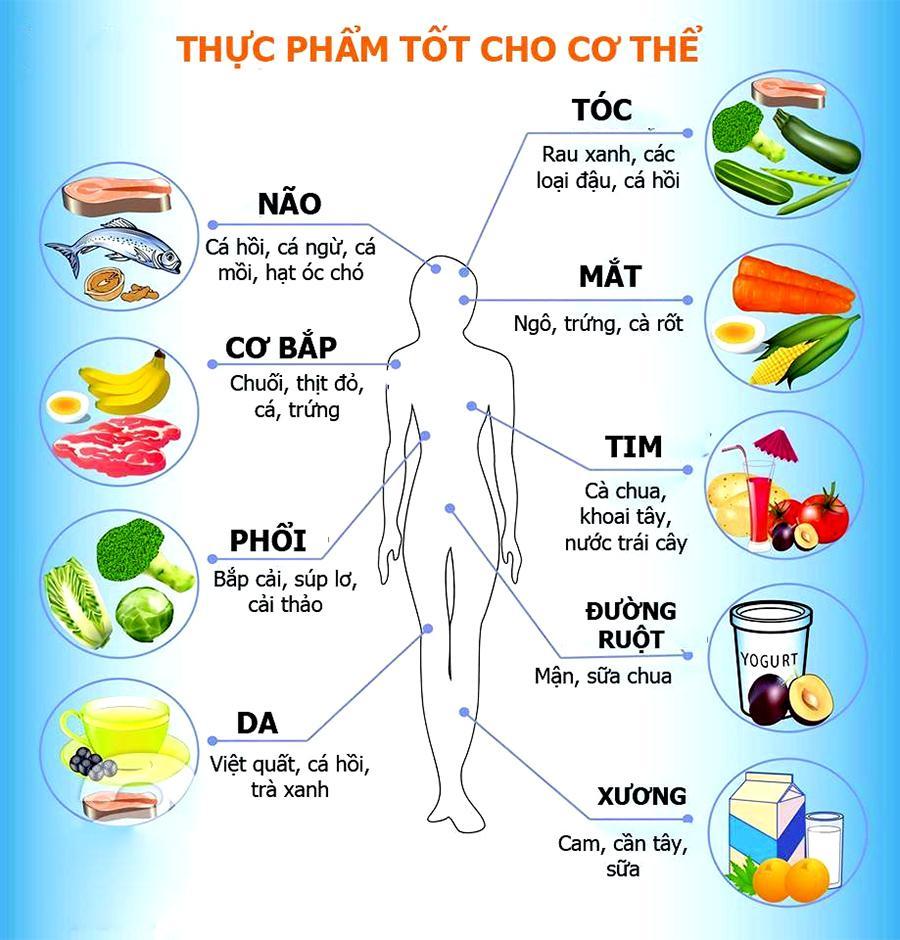 Thực phẩm tốt cho từng bộ phận cơ thể người cac thuc pham tot cho tung bo phan co the