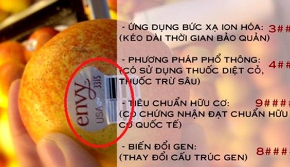 cach phan biet thuc pham bien doi gen Hướng dẫn nhận biết thực phẩm biến đổi gen cach phan biet thuc pham bien doi gen voi san pham tu nhien