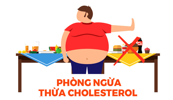 Tử vong do bệnh không lây nhiễm tại Việt Nam cao hơn trung bình thế giới thang hanh dong day lui tinh trang thua cholesterol trong co the byt