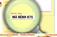 Mã bệnh K75: Bệnh viêm gan khác