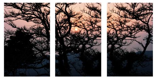 ~ Mes expérimentations photographiques : les polyptyques (2/2) ~