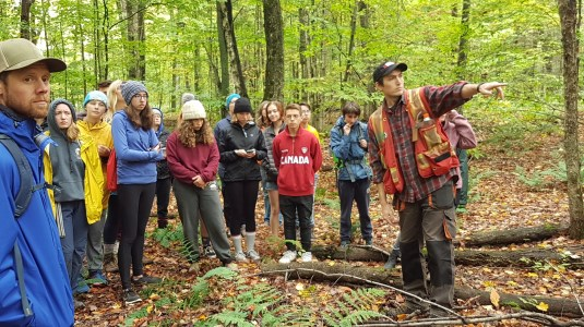 sustainable forestry at Haliburton Forest