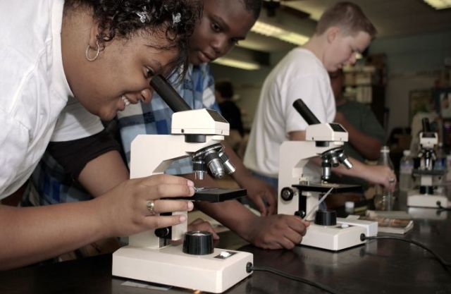 Best Microscopes for Students