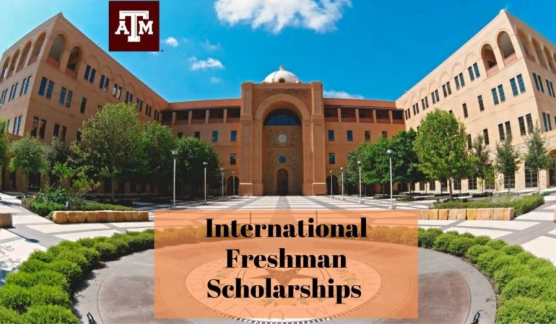 Image result for International Freshman Scholarships at Texas A&M University in USA