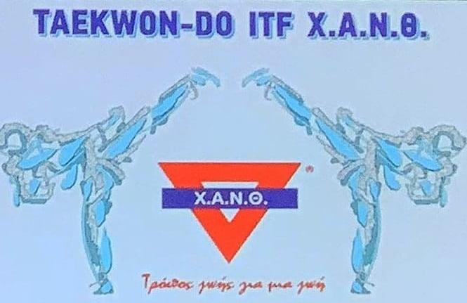 Διαδικτυακό μάθημα TaeKwon Do από την Χ.Α.Ν.Θ.