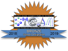 STEAM Bronze Award