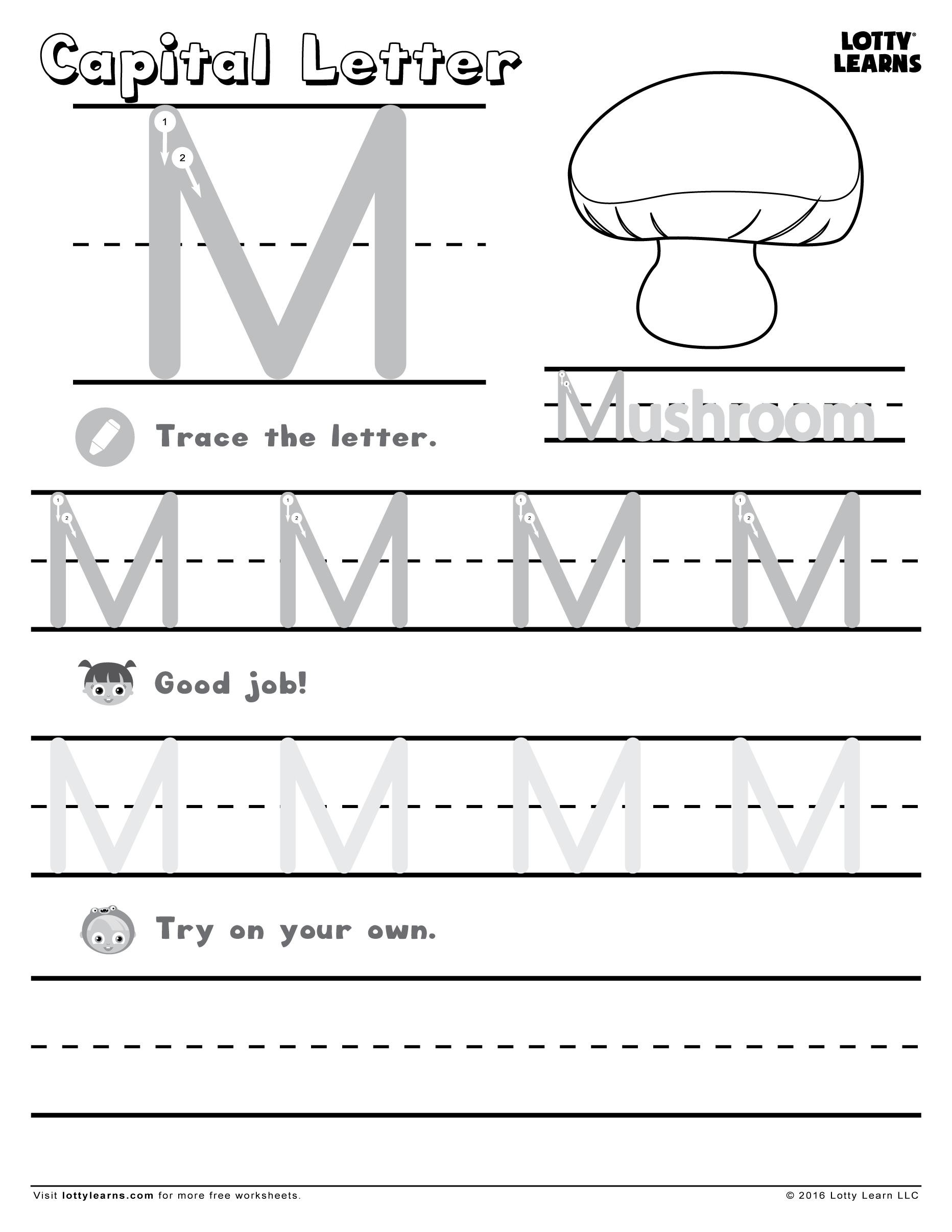 Learning To Write Abc Sheets 2 Letter Worksheets