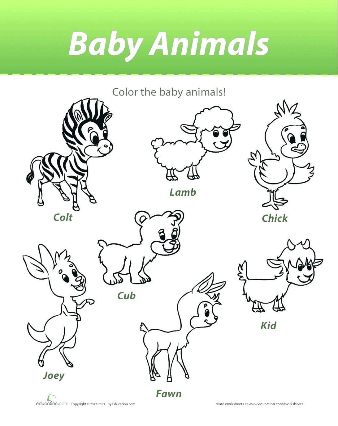 Printable Worksheets Baby Animals Letter Worksheets