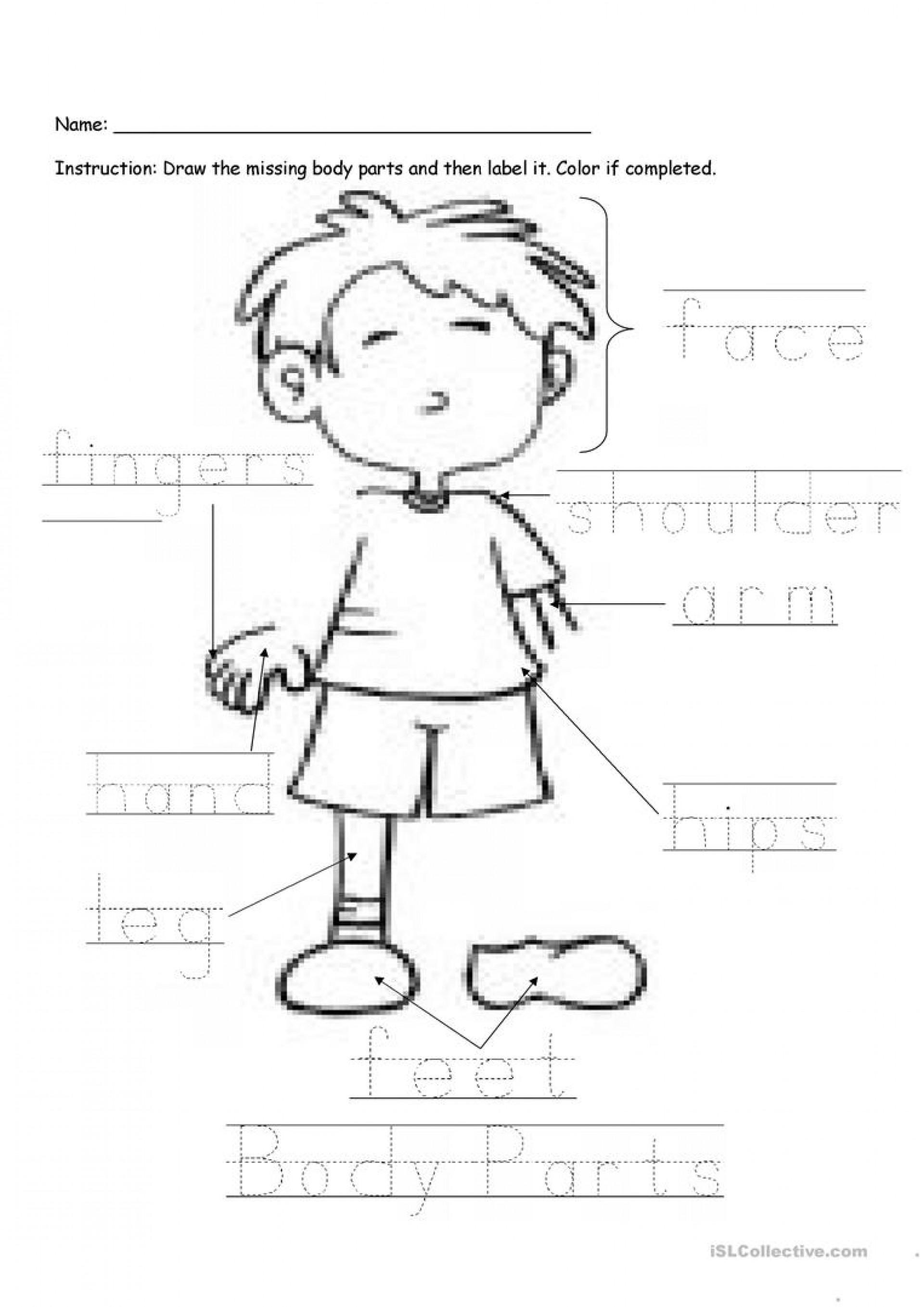 Printable Worksheets Parts Body Kindergarten