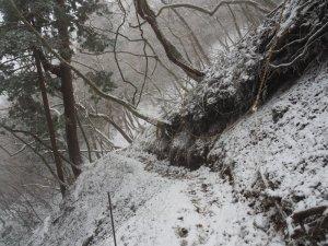 七合目 登山道