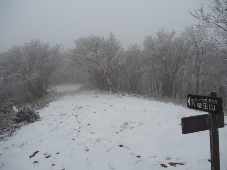 綿向山から先の道