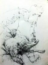 """SYMBIOSIS I (2012) MEDIA: Graphite & Pencil on paper. SIZE: 16"""" x 20"""""""