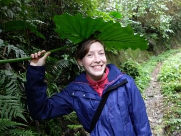 Plus besoin de parapluie
