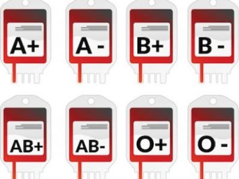 Grupos Sanguíneos y Compatibilidad