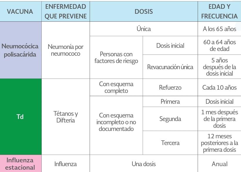 Esquema de Vacunación del Adulto Mayor (60 Años y más)