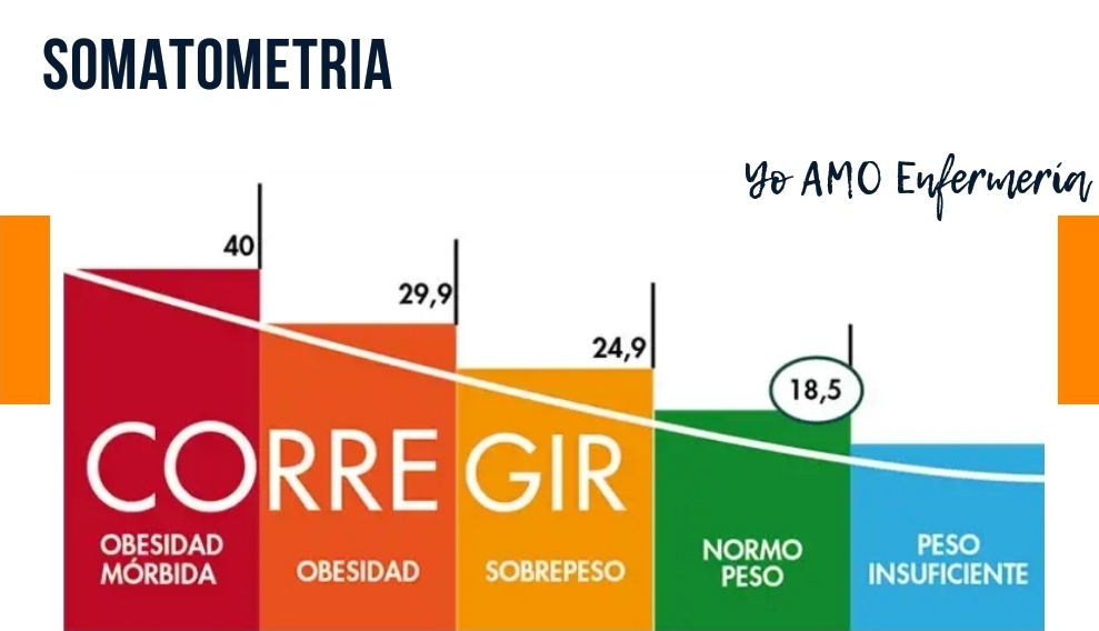 estadios del indice de maso corporal