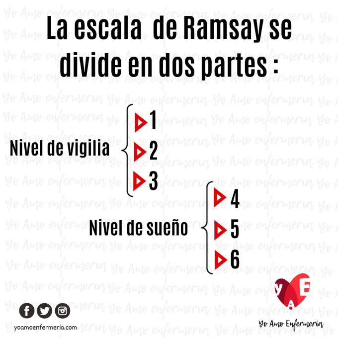 COMO SE DIVIDE LA ESCALA DE RAMSAY
