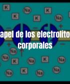 El papel de los electrolitos en el cuerpo.