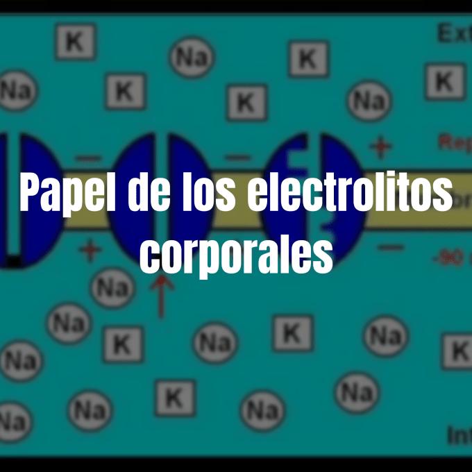 El papel de los electrolitos en el cuerpo