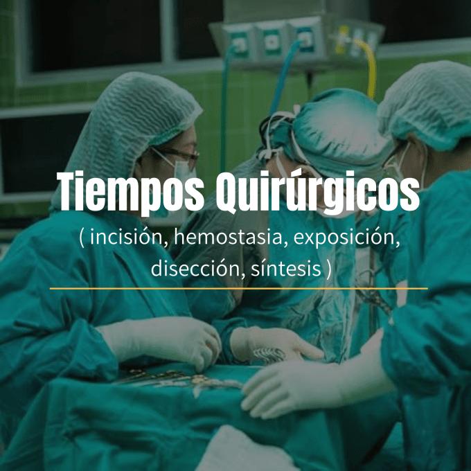 Los tiempos quirúrgicos son las etapas en las que se divide la cirugía y son: Incisión, corte, Hemostasia, Exposición, Disección, síntesis.