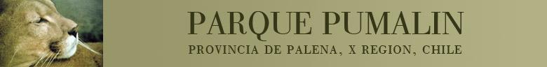 www.parquepumalin.cl