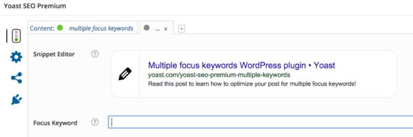 multiple focus keyword: input field