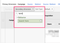 utm_term in Google Analytics