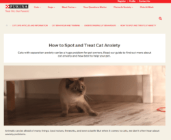 cat-anxiety-purina-250x205 Theme Builder Layout