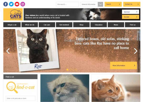 cats-protection-homepage-e1536243627672-600x427 Jono reviews: Cats Protection
