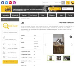 leo-live-250x219 Jono reviews: Cats Protection