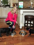 1 Out Of 2 Pets Is Overweight. Here's How To Stop Giving Into Begging