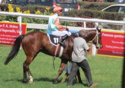 Winning Horse of Dr.M.A.M. Ramaswamy Memorial Gold Cup