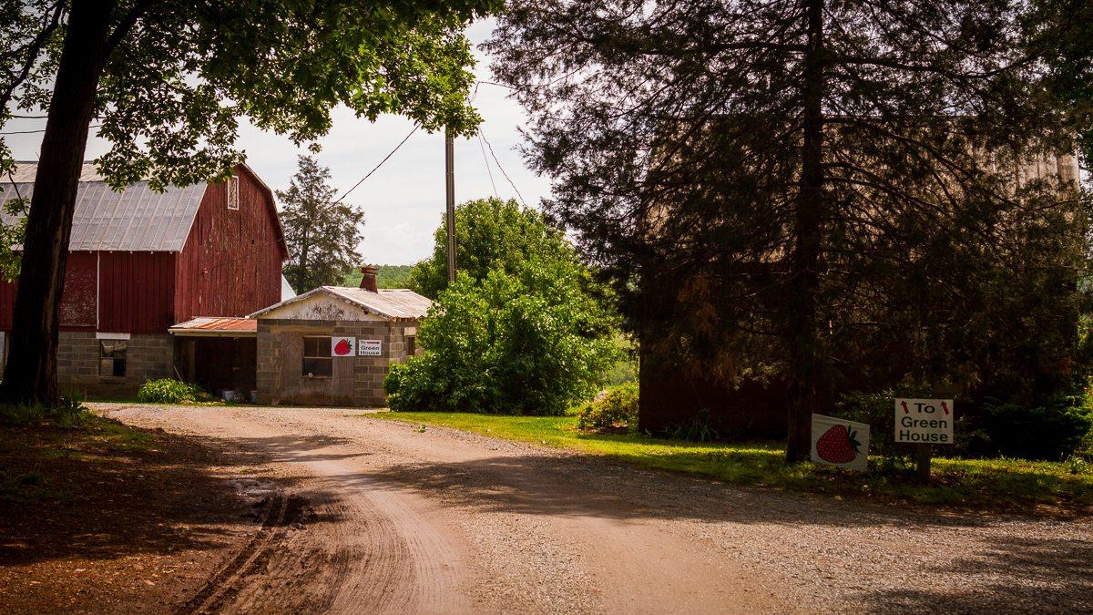 Farm Fresh Lynchburg Va