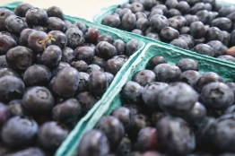 Occasionally we sell some blueberries by the quart...