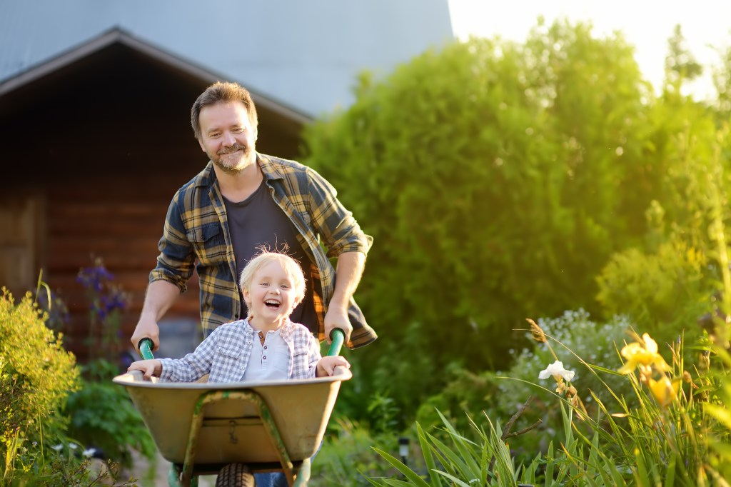 A father pushes his kid in a wheelbarrow from the storage shed.