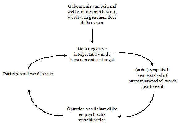 de vicieuze cirkel van paniek paniekcirkel