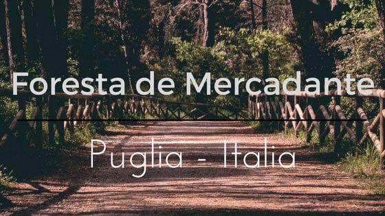 Italia – Visita a la Foresta Mercadante